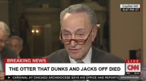PHOTO CNN News Headline The Otter That Dunks And Jacks Off Died