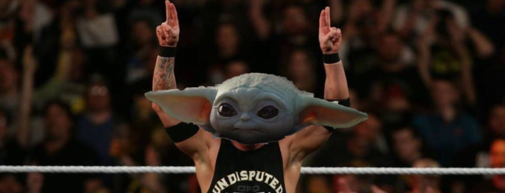 PHOTO Baby Yoda In The Boxing Ring