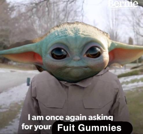 PHOTO Bernie Sanders Supporter Baby Yoda Dressed Up Like Military Member